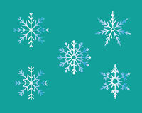 Snow flakes. Five kinds of snow flakes for your christmas Stock Image