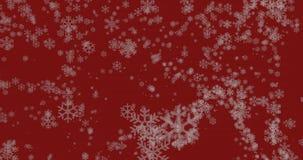 Snow flakes swirl stock footage