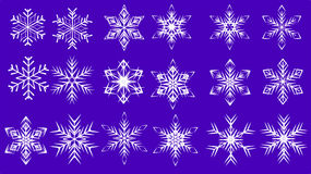 snow flakes stock photography