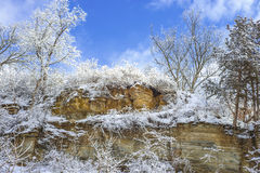 Snow flocked cliff and trees Royalty Free Stock Image