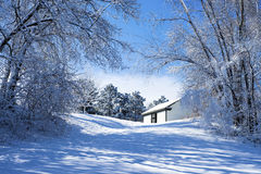 Snow flocked trees, shed Royalty Free Stock Photos