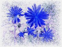 Snow flowers Stock Image