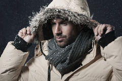 Snow-flurry Royalty Free Stock Photos