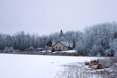 Snow and Fog Stock Photo