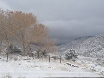 Snow in the foothills. Fresh snow in the foothills New Mexico Albuquerque beautiful white snow royalty free stock photography