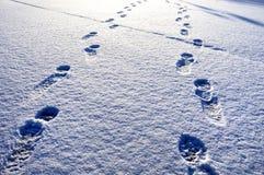 Snow Footprints Stock Image