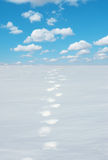 Snow footprints Stock Photo