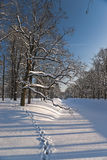 Snow footsteps vertical Royalty Free Stock Image