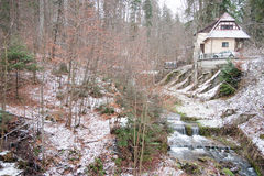 Snow forest and a river Stock Image