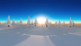 Snow forest Stock Image