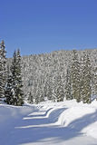 Snow forests in the mountain Stock Photo