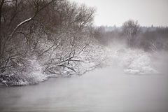 Snow and frost on trees over river. Overcast snowy weather. Royalty Free Stock Photography