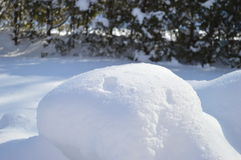 Snow and furs 2 Royalty Free Stock Photography