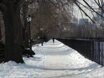 snow går Arkivfoton