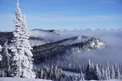Snow ghost overlooking cloud-blanketed valley and Peaks Peeking above it at Whitefish Resort. Whitefish Mountain Resort near the town of Whitefish, Montana is royalty free stock photo