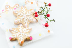 Snow gingerbread gift Stock Images