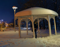 Snow girl. A girl in the park under the snowfall of night stock images