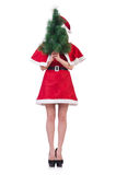 Snow girl santa in christmas concept Royalty Free Stock Photography