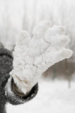 Snow Glove Royalty Free Stock Images