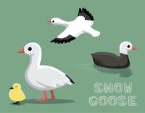 Snow Goose Cartoon Vector Illustration Stock Photo