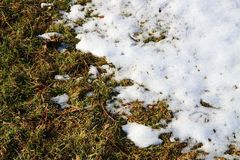 Snow and grass Royalty Free Stock Photography