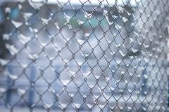 Snow is on the grid-net after a snowstorm in the cells. royalty free stock photography
