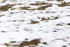 Snow on the ground in nature. In the park in nature Royalty Free Stock Images