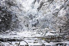 Snow Hailuogou scenery Stock Photography