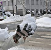 Snow in hand Stock Image