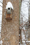 Snow on a hand made birdhouse Stock Image