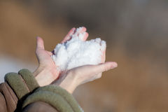 Snow in hands Stock Image