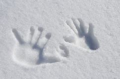 Snow Hands. Hand & dog prints in Snow Stock Photo
