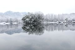 Snow in hangzhou royalty free stock photo