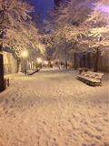 Snow in Harlem. Walking through the park I came upon this beautiful Royalty Free Stock Photography
