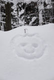 Snow head Royalty Free Stock Images