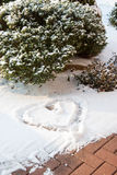 Snow heart and bush. View of an heart in the fresh snow in front of a bush stock photography