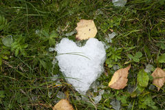 Snow heart on green grass royalty free stock photos