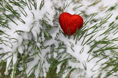 Snow hearts red winter two. Winter in all its manifestations snow-covered streets of trees and lawn Royalty Free Stock Photography