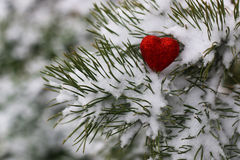 Snow hearts red winter two. Winter in all its manifestations snow-covered streets of trees and lawn Royalty Free Stock Image