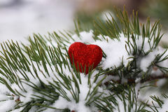 Snow hearts red winter two. Winter in all its manifestations snow-covered streets of trees and lawn Royalty Free Stock Photos