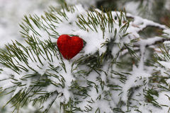 Snow hearts red winter two. Winter in all its manifestations snow-covered streets of trees and lawn Royalty Free Stock Photo