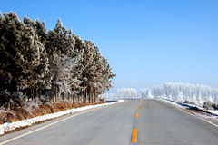 Snow in the highway. Mountain highway with snow. Dangerous curve Stock Image
