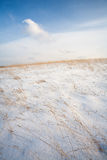 Snow on a hillside with yellow grass in winter Royalty Free Stock Photos