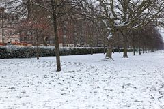 Snow Hyde Park stock images