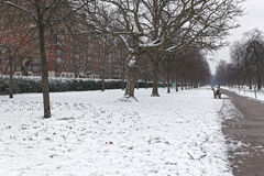 Snow in Hyde Park Royalty Free Stock Image