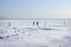 Snow ice walking. Snow and ice, people walking in the fog on hazy day, fence posts and winter landscape covered in snow, sea or ocean in background stock photo