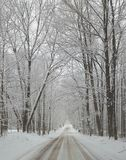 Winter roadway. Snow ice white winter Michigan Royalty Free Stock Images
