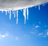 Snow and icicles Stock Images