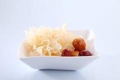 Snow jelly fungus Royalty Free Stock Photos