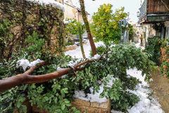 Snow in Jerusalem Royalty Free Stock Photography